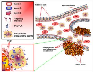 Diagram shows a table of contents: Agent 1, Agent 2, Agent 3, Targeting moieties, PEG/PLA, nanoparticles encapsulating agents 1-3. The drawing labels red blood cells, endothelial cells, tumor tissue, and disorganized and leaky tumor endothelium. The drawing depicts red blood cells and the encapsulating agents passing through channels bounded by the endothelial cells, with two sets of tumor tissues on the opposite side of the endothelial cells. An inset shows the drugs (Agents 1-3) leaving the encapsulating agents and passing through the endothelial cells to attack tumor tissue.