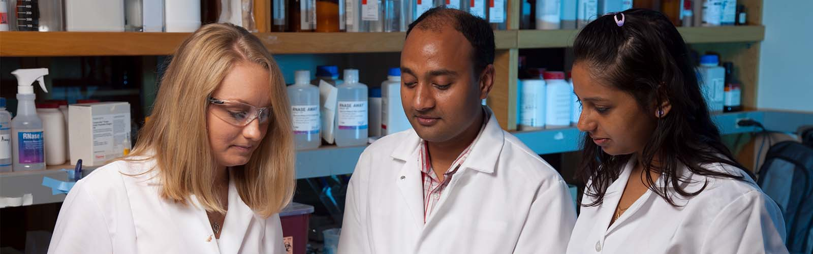 Research Home – Department of Dermatology – UW–Madison
