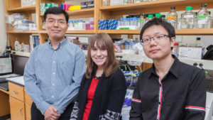 Hao Chang, PhD (left), in his lab with research assistant Samantha Vold and undergraduate researcher Bo Dong.