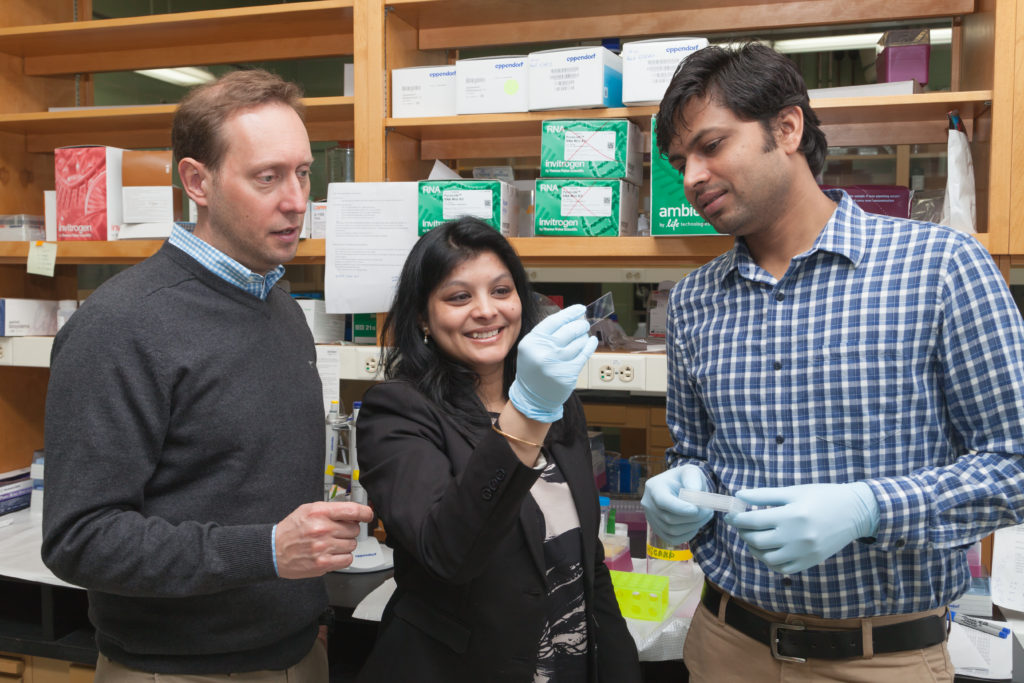 Stefan Schieke, MD (left), with lab members Sushmita Roy (center) and Hamidullah Khan (right).